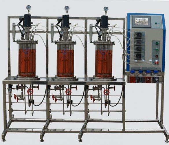多联平行机械搅拌玻璃发酵罐